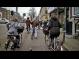 Столична общината ползва опита от велотранспорта в Холандия
